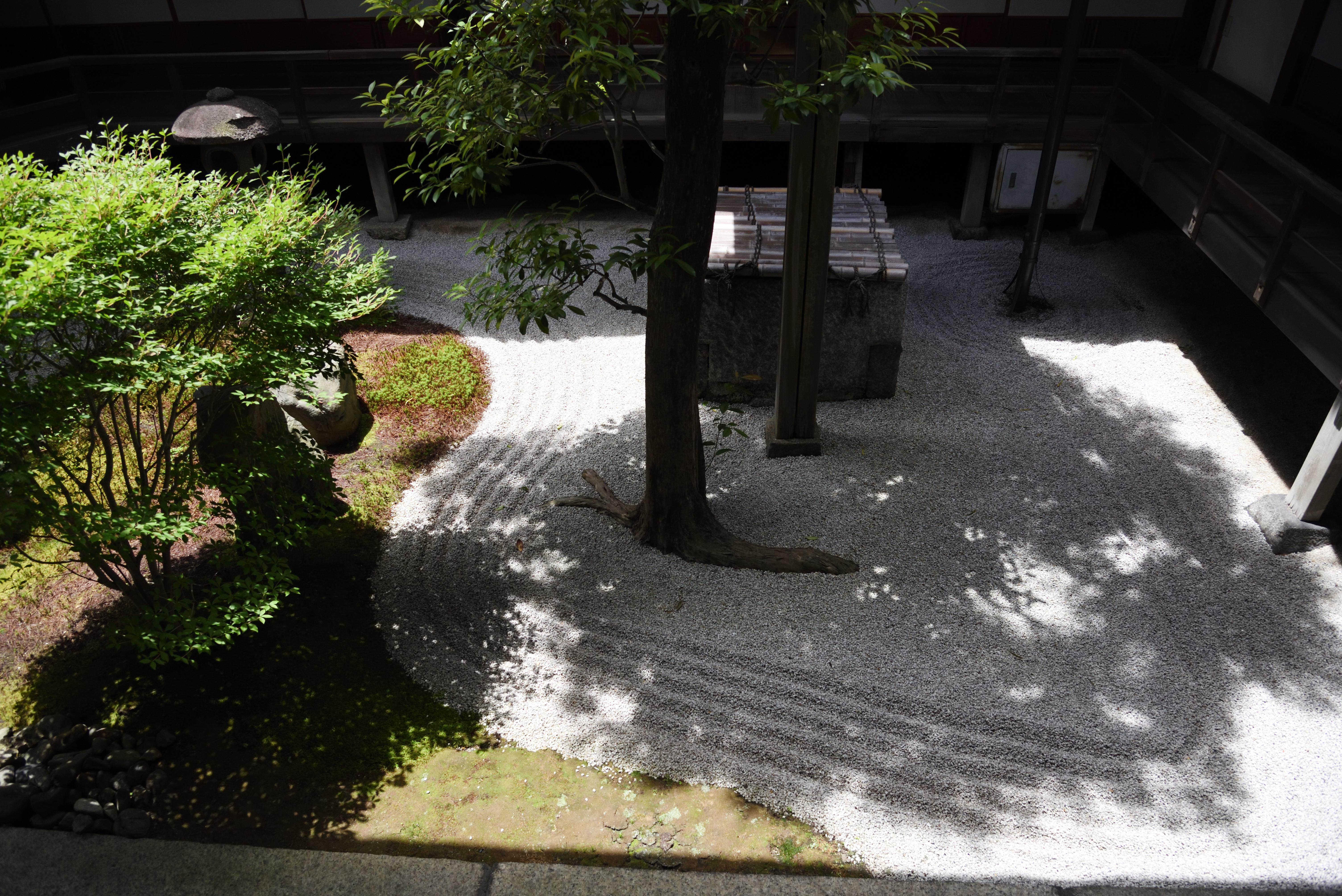 京都 両足院 真っ白の半夏生庭園 2018 Wakasa15thfd